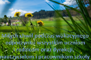 Wakacje 17 mm.png