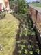 Galeria Mały ogród - wielka sprawa